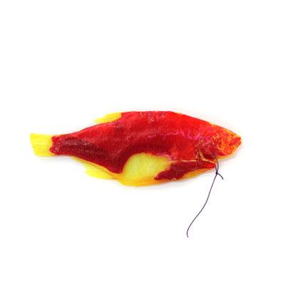 tanya_brodsky_red_fish2